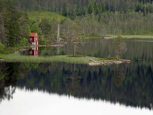 Home on Pond